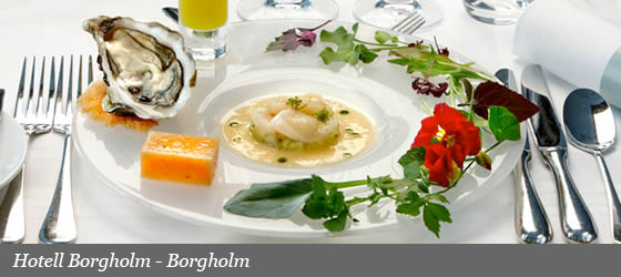 Hotel Borgholm - Borgholm